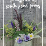 Be Inspired at South Pond Farms