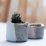 DIY Cement Planter Tutorial